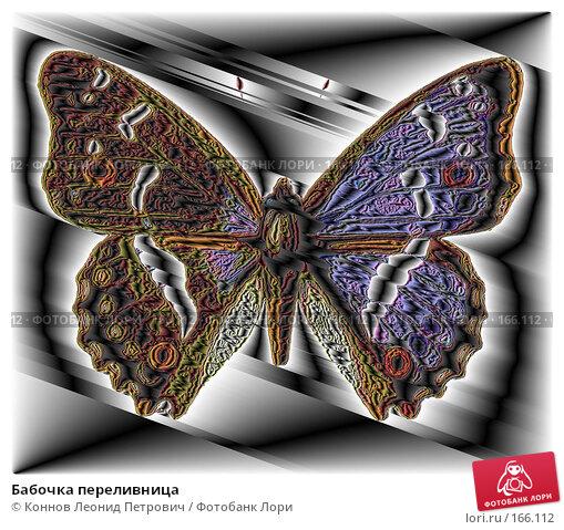 Бабочка переливница, иллюстрация № 166112 (c) Коннов Леонид Петрович / Фотобанк Лори