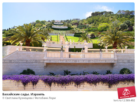 Купить «Бахайские сады. Израиль», фото № 2589492, снято 23 мая 2011 г. (c) Светлана Кузнецова / Фотобанк Лори
