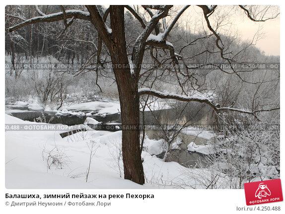 Купить «Балашиха, зимний пейзаж на реке Пехорка», эксклюзивное фото № 4250488, снято 26 апреля 2010 г. (c) Дмитрий Неумоин / Фотобанк Лори