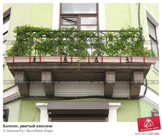 Балкон, увитый хмелем, фото № 328968, снято 14 июня 2008 г. (c) Заноза-Ру / Фотобанк Лори