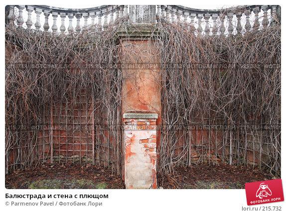 Балюстрада и стена с плющом, фото № 215732, снято 13 февраля 2008 г. (c) Parmenov Pavel / Фотобанк Лори