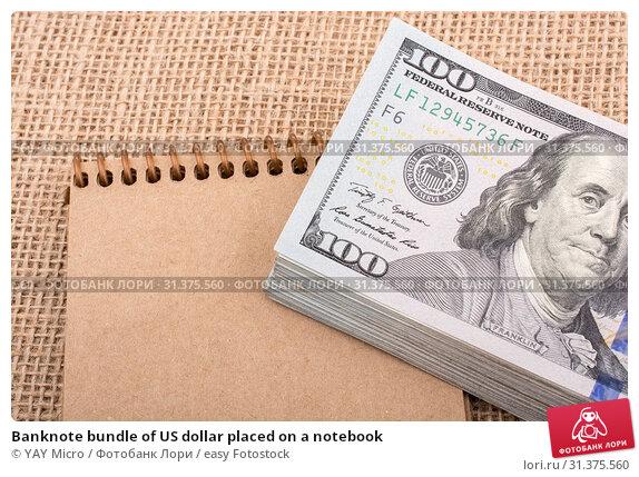 Купить «Banknote bundle of US dollar placed on a notebook», фото № 31375560, снято 24 мая 2017 г. (c) easy Fotostock / Фотобанк Лори