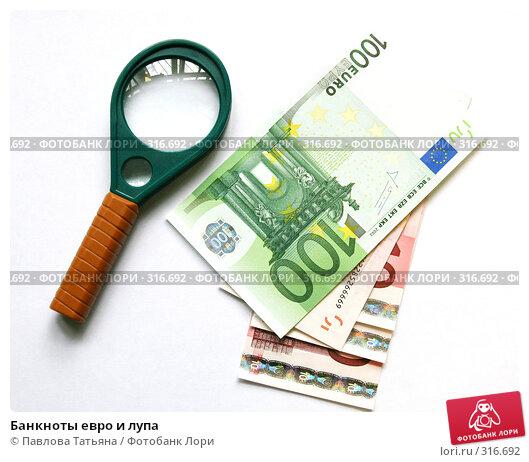 Банкноты евро и лупа, фото № 316692, снято 3 июня 2008 г. (c) Павлова Татьяна / Фотобанк Лори