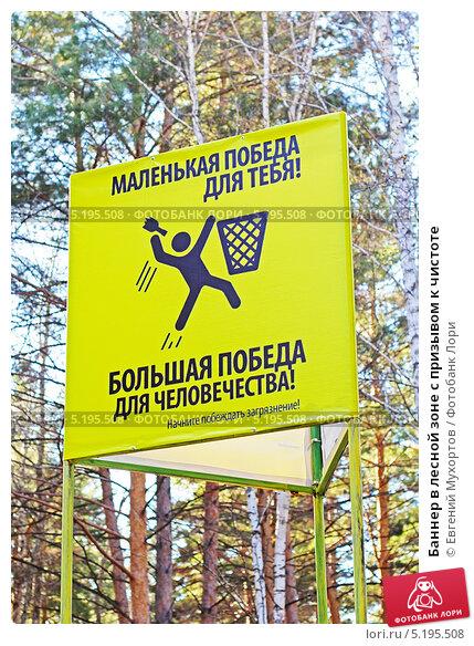 Баннер в лесной зоне с призывом к чистоте. Стоковое фото, фотограф Евгений Мухортов / Фотобанк Лори