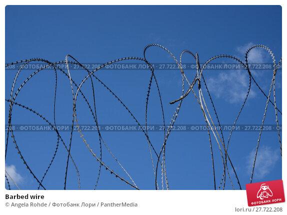 Купить «Barbed wire», фото № 27722208, снято 22 марта 2019 г. (c) PantherMedia / Фотобанк Лори