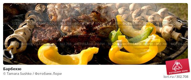 Барбекю, фото № 302708, снято 24 мая 2008 г. (c) Tamara Sushko / Фотобанк Лори
