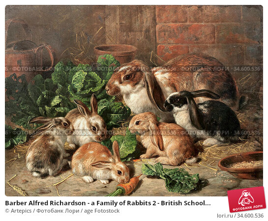Barber Alfred Richardson - a Family of Rabbits 2 - British School... Стоковое фото, фотограф Artepics / age Fotostock / Фотобанк Лори