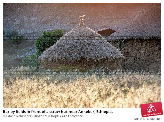 Barley fields in front of a straw hut near Ankober, Ethiopia. Стоковое фото, фотограф Edwin Remsberg / age Fotostock / Фотобанк Лори