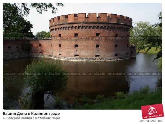 Башня Дона в Калининграде, фото № 266388, снято 22 июля 2007 г. (c) Валерий Шанин / Фотобанк Лори