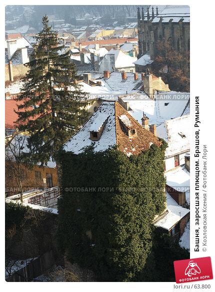 Башня, заросшая плющом. Брашов, Румыния, фото № 63800, снято 1 января 2007 г. (c) Козловская Ксения / Фотобанк Лори