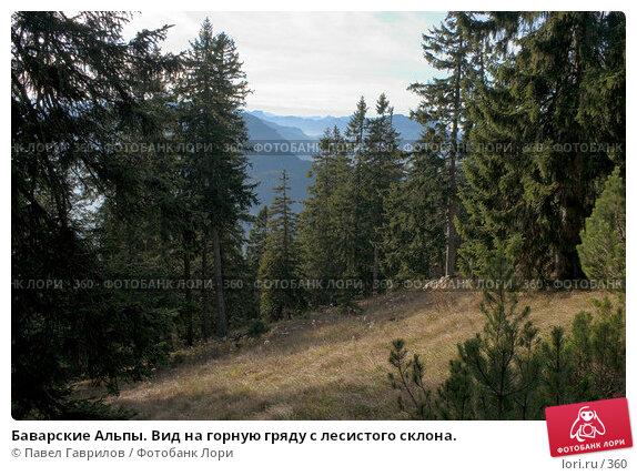 Баварские Альпы. Вид на горную гряду с лесистого склона., фото № 360, снято 24 июля 2017 г. (c) Павел Гаврилов / Фотобанк Лори
