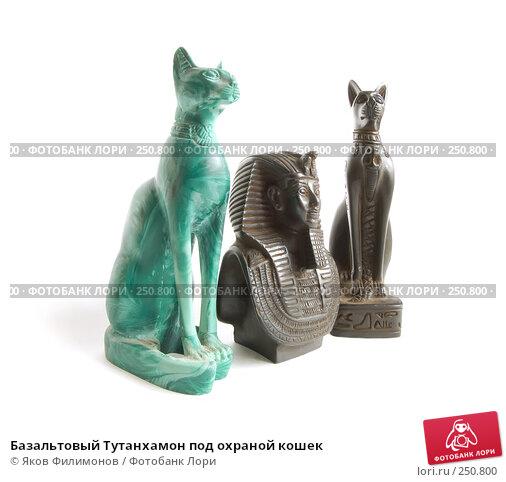 Базальтовый Тутанхамон под охраной кошек, фото № 250800, снято 12 апреля 2008 г. (c) Яков Филимонов / Фотобанк Лори