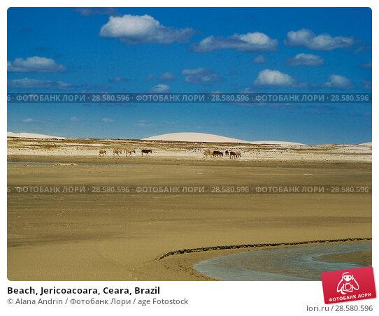 Купить «Beach, Jericoacoara, Ceara, Brazil», фото № 28580596, снято 10 августа 2007 г. (c) age Fotostock / Фотобанк Лори