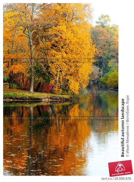 Купить «Beautiful autumn landscape», фото № 29090876, снято 10 октября 2013 г. (c) Иван Михайлов / Фотобанк Лори