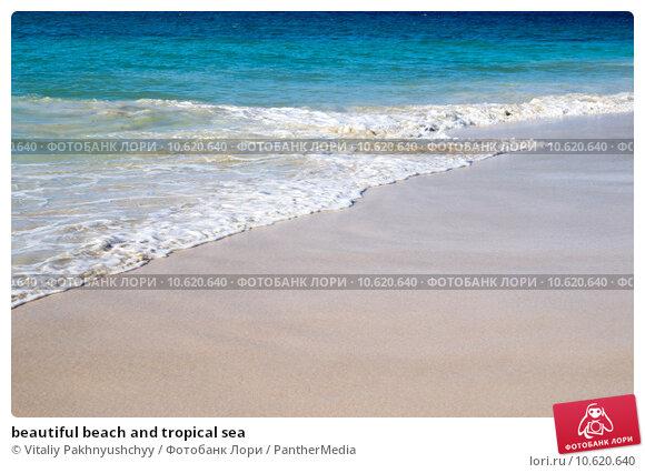beautiful beach and tropical sea. Стоковое фото, фотограф Vitaliy Pakhnyushchyy / PantherMedia / Фотобанк Лори