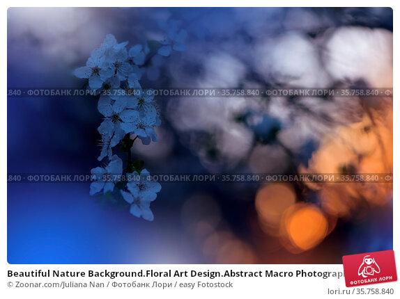 Beautiful Nature Background.Floral Art Design.Abstract Macro Photography... Стоковое фото, фотограф Zoonar.com/Juliana Nan / easy Fotostock / Фотобанк Лори