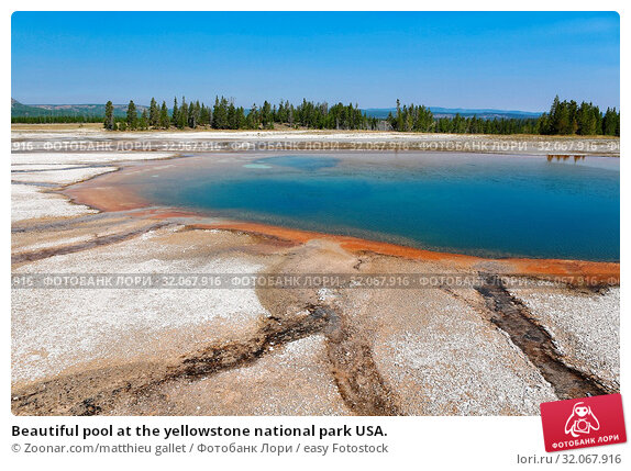 Beautiful pool at the yellowstone national park USA. Стоковое фото, фотограф Zoonar.com/matthieu gallet / easy Fotostock / Фотобанк Лори