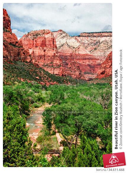 Beautiful river in Zion canyon. Utah. USA. Стоковое фото, фотограф Zoonar.com/Dmitry Kushch / age Fotostock / Фотобанк Лори