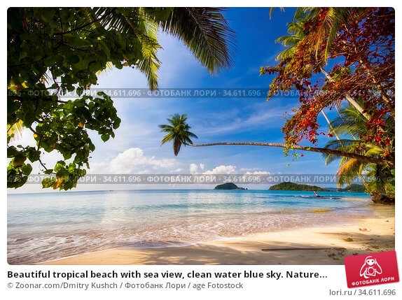Beautiful tropical beach with sea view, clean water blue sky. Nature... Стоковое фото, фотограф Zoonar.com/Dmitry Kushch / age Fotostock / Фотобанк Лори