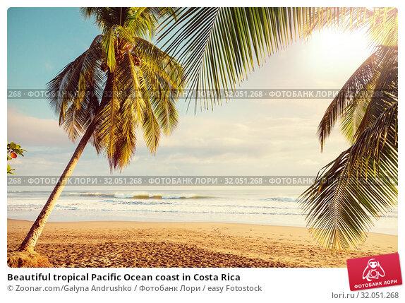 Beautiful tropical Pacific Ocean coast in Costa Rica. Стоковое фото, фотограф Zoonar.com/Galyna Andrushko / easy Fotostock / Фотобанк Лори