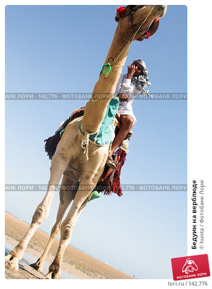 Бедуин на верблюде, фото № 142776, снято 6 сентября 2007 г. (c) hunta / Фотобанк Лори