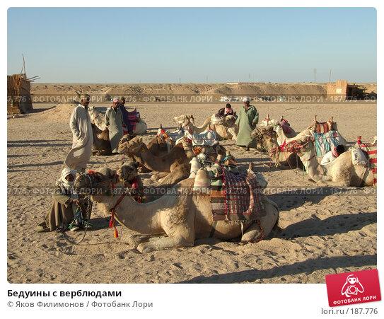 Бедуины с верблюдами, эксклюзивное фото № 187776, снято 13 января 2008 г. (c) Яков Филимонов / Фотобанк Лори