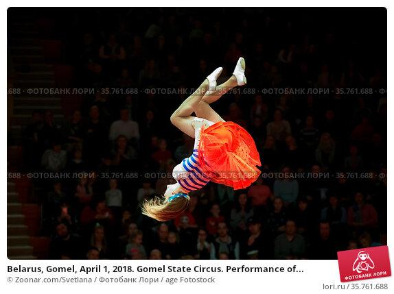 Belarus, Gomel, April 1, 2018. Gomel State Circus. Performance of... Стоковое фото, фотограф Zoonar.com/Svetlana / age Fotostock / Фотобанк Лори