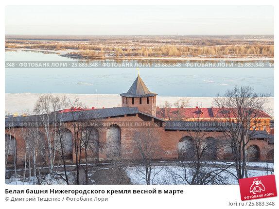 Купить «Белая башня Нижегородского кремля весной в марте», фото № 25883348, снято 16 марта 2015 г. (c) Дмитрий Тищенко / Фотобанк Лори