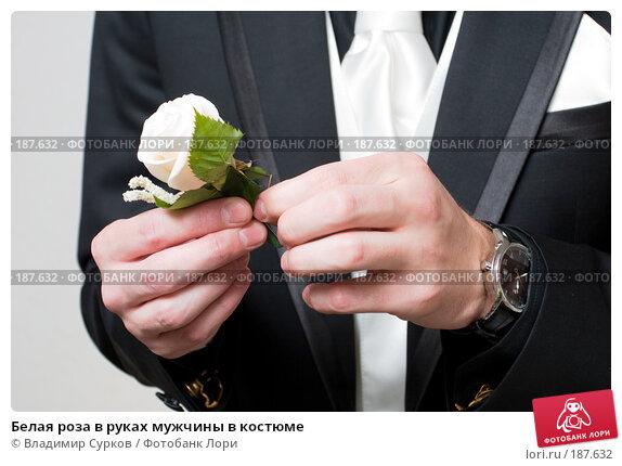 Белая роза в руках мужчины в костюме, фото № 187632, снято 22 сентября 2007 г. (c) Владимир Сурков / Фотобанк Лори