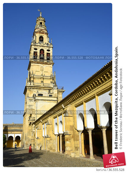 Bell tower of the Mezquita, Cordoba, Andalusia,Spain. Стоковое фото, фотограф Frederic Soreau / age Fotostock / Фотобанк Лори