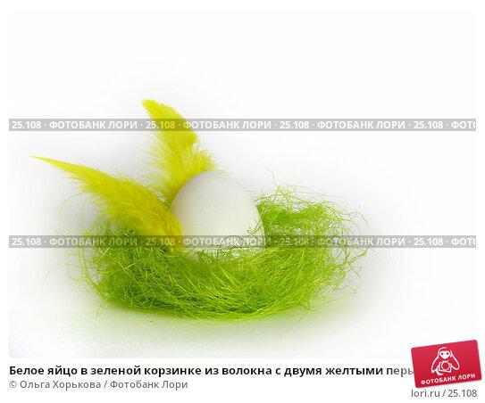 Белое яйцо в зеленой корзинке из волокна с двумя желтыми перышками в виде крыльев, фото № 25108, снято 20 марта 2007 г. (c) Ольга Хорькова / Фотобанк Лори