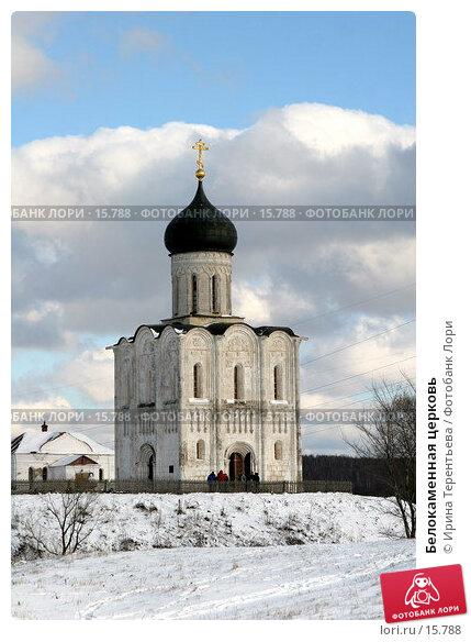 Белокаменная церковь, фото № 15788, снято 5 ноября 2006 г. (c) Ирина Терентьева / Фотобанк Лори