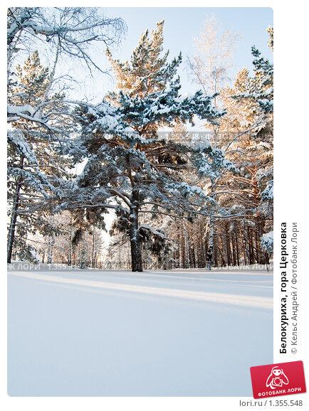 Белокуриха, гора Церковка. Стоковое фото, фотограф Кельс Андрей / Фотобанк Лори