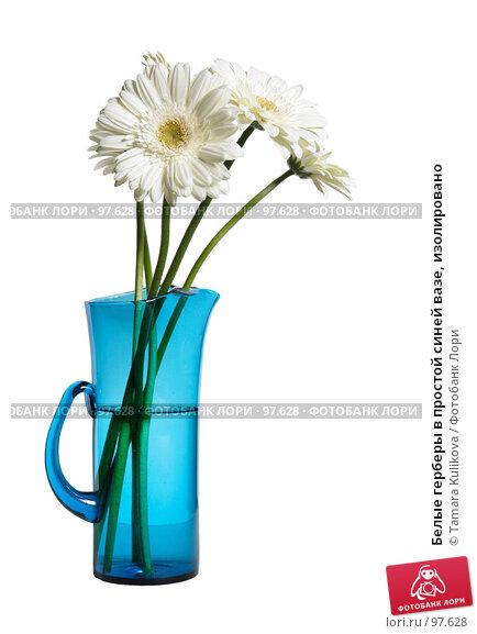 Белые герберы в простой синей вазе, изолировано, фото № 97628, снято 13 октября 2007 г. (c) Tamara Kulikova / Фотобанк Лори