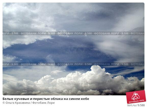 Белые кучевые и перистые облака на синем небе, фото № 9588, снято 26 июня 2006 г. (c) Ольга Красавина / Фотобанк Лори