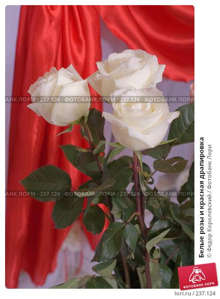 Купить «Белые розы и красная драпировка», фото № 237124, снято 29 марта 2008 г. (c) Федор Королевский / Фотобанк Лори