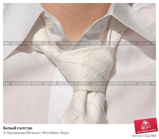 Белый галстук, фото № 322968, снято 12 июня 2008 г. (c) Лукиянова Наталья / Фотобанк Лори