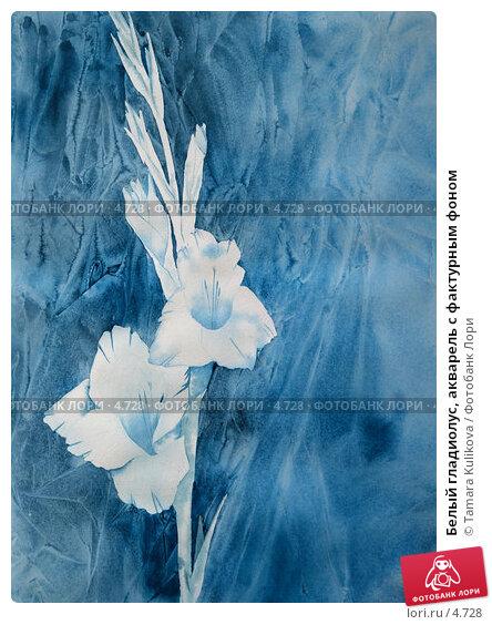 Белый гладиолус, акварель с фактурным фоном, иллюстрация № 4728 (c) Tamara Kulikova / Фотобанк Лори