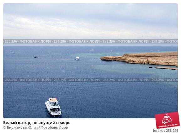 Купить «Белый катер, плывущий в море», фото № 253296, снято 2 января 2008 г. (c) Биржанова Юлия / Фотобанк Лори