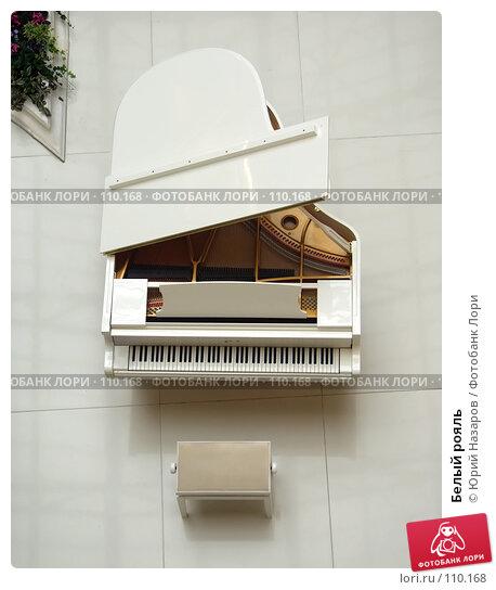 Купить «Белый рояль», фото № 110168, снято 13 октября 2007 г. (c) Юрий Назаров / Фотобанк Лори