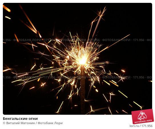 Бенгальские огни, фото № 171956, снято 10 января 2008 г. (c) Виталий Матонин / Фотобанк Лори