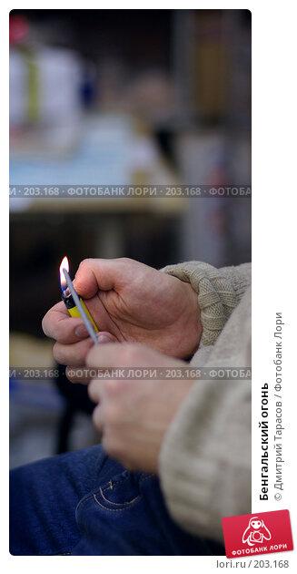 Бенгальский огонь, фото № 203168, снято 28 декабря 2007 г. (c) Дмитрий Тарасов / Фотобанк Лори