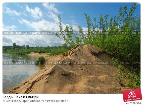 Бердь. Река в Сибири, фото № 288924, снято 11 июня 2007 г. (c) Селигеев Андрей Иванович / Фотобанк Лори