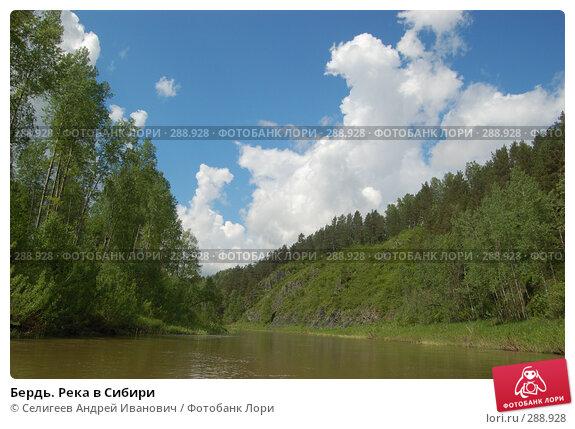 Бердь. Река в Сибири, фото № 288928, снято 11 июня 2007 г. (c) Селигеев Андрей Иванович / Фотобанк Лори