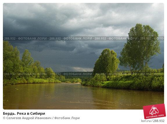 Купить «Бердь. Река в Сибири», фото № 288932, снято 11 июня 2007 г. (c) Селигеев Андрей Иванович / Фотобанк Лори