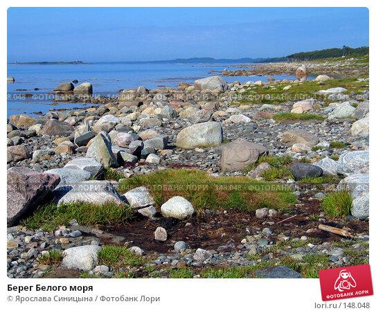 Купить «Берег Белого моря», фото № 148048, снято 16 августа 2007 г. (c) Ярослава Синицына / Фотобанк Лори