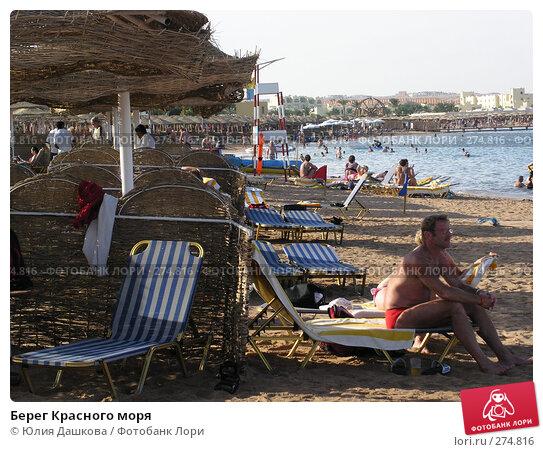 Берег Красного моря, фото № 274816, снято 1 января 2003 г. (c) Юлия Дашкова / Фотобанк Лори