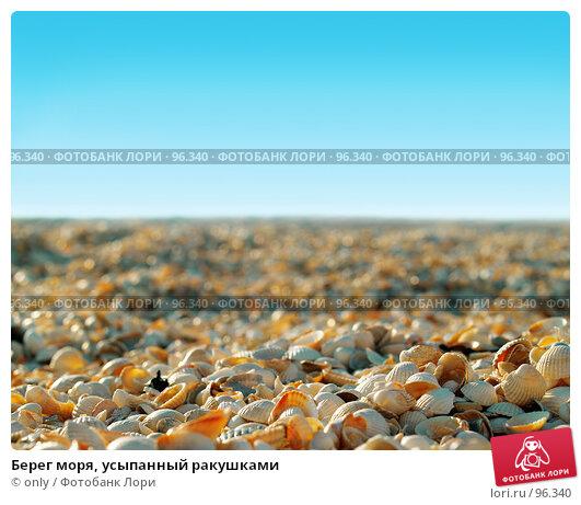 Берег моря, усыпанный ракушками, фото № 96340, снято 6 августа 2007 г. (c) only / Фотобанк Лори