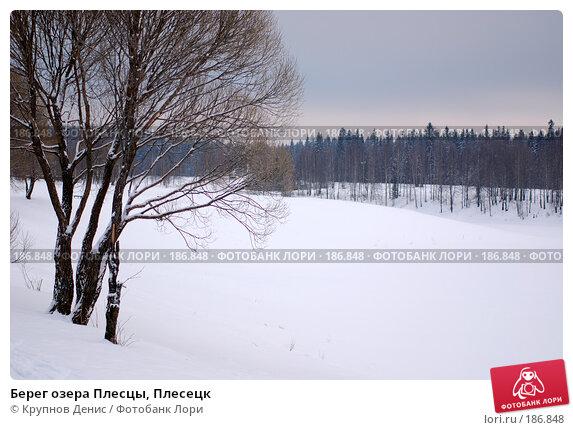 Берег озера Плесцы, Плесецк, фото № 186848, снято 25 марта 2017 г. (c) Крупнов Денис / Фотобанк Лори