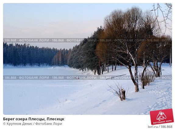 Берег озера Плесцы, Плесецк, фото № 186868, снято 27 февраля 2017 г. (c) Крупнов Денис / Фотобанк Лори
